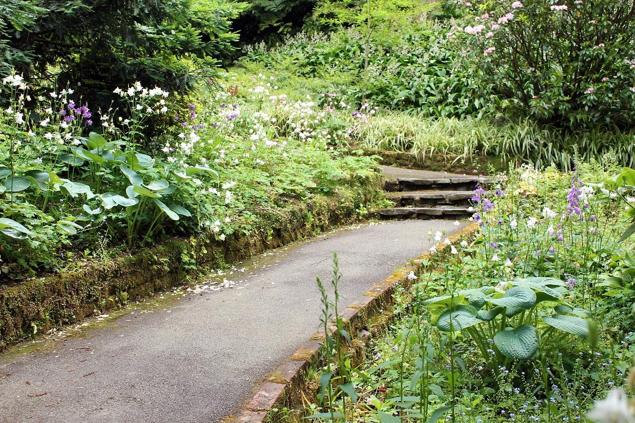 Aménagement d'un jardin sans pelouse : comment le faire ?